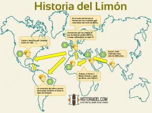 Origen del Limón